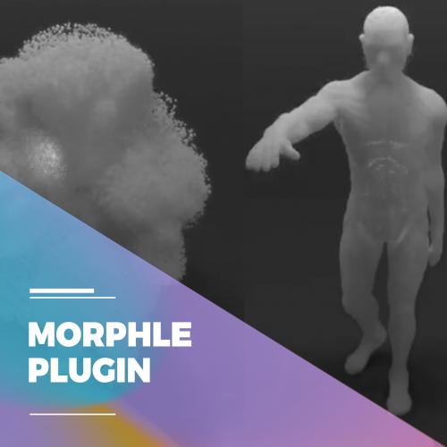 MORPHLE-PLUGIN-500x500